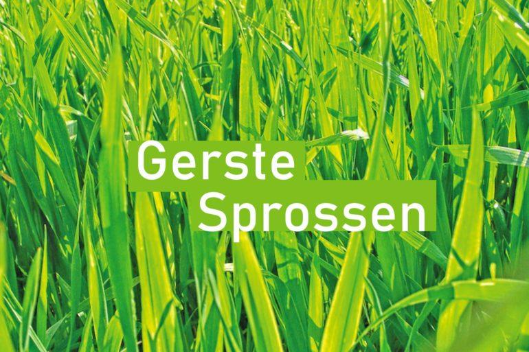 Gerste-Sprossen