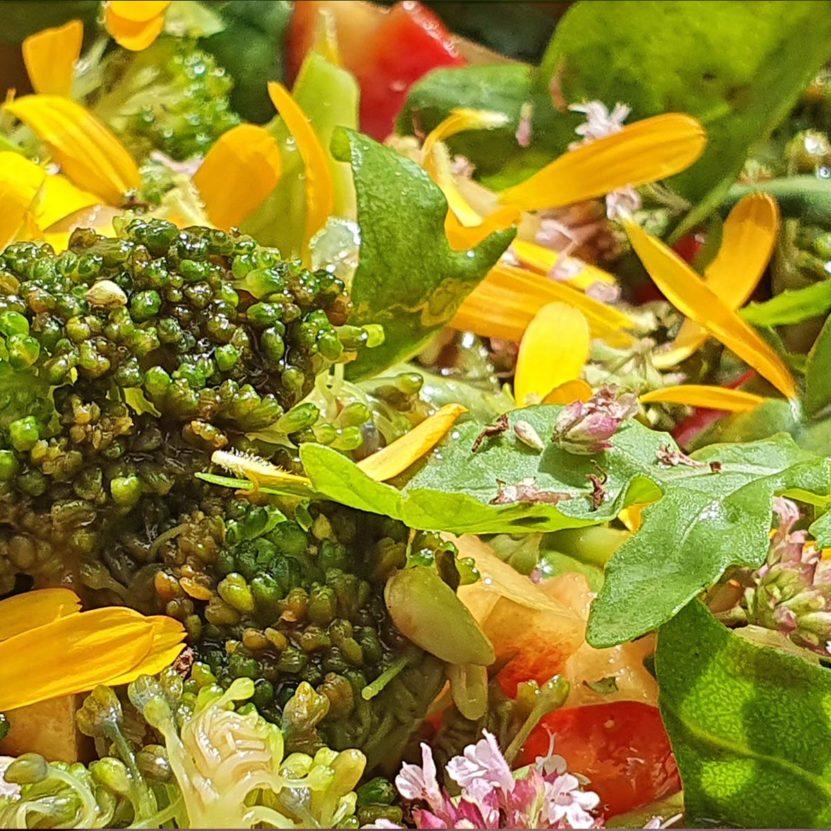 Brokkoli Wildkräuter Salat